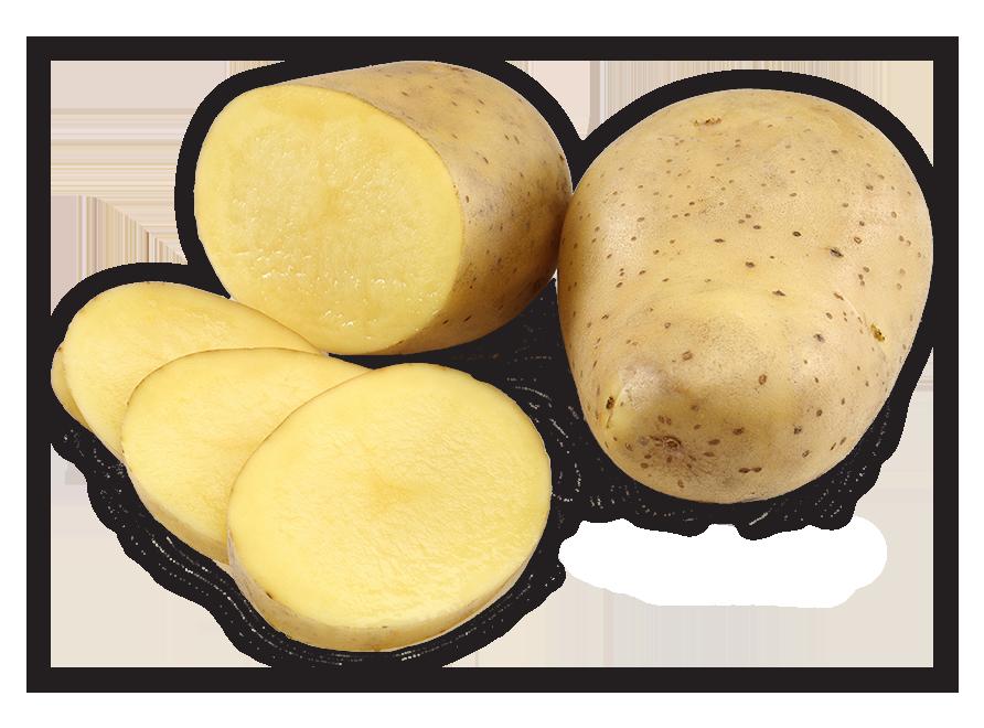 geschälte kartoffeln lagern